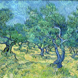 """Vincent van Gogh, """"Olivengarten"""", 1889"""