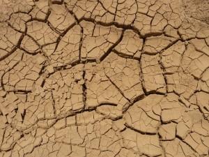 Dürre in Kalifornien (Bild: LoggaWiggler, Pixabay)