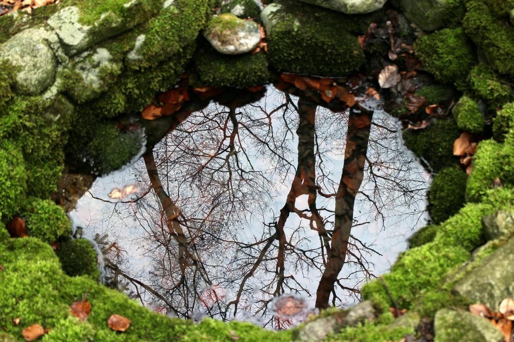 Brunnen (Bild: Antranias, Pixabay)