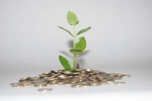 """""""Grün"""" angelegtes Geld (Bild: Mizianitka, Pixabay)"""
