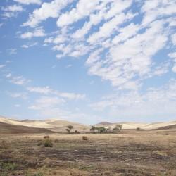 Kalifornien (Bild: carelbron0, Pixabay)
